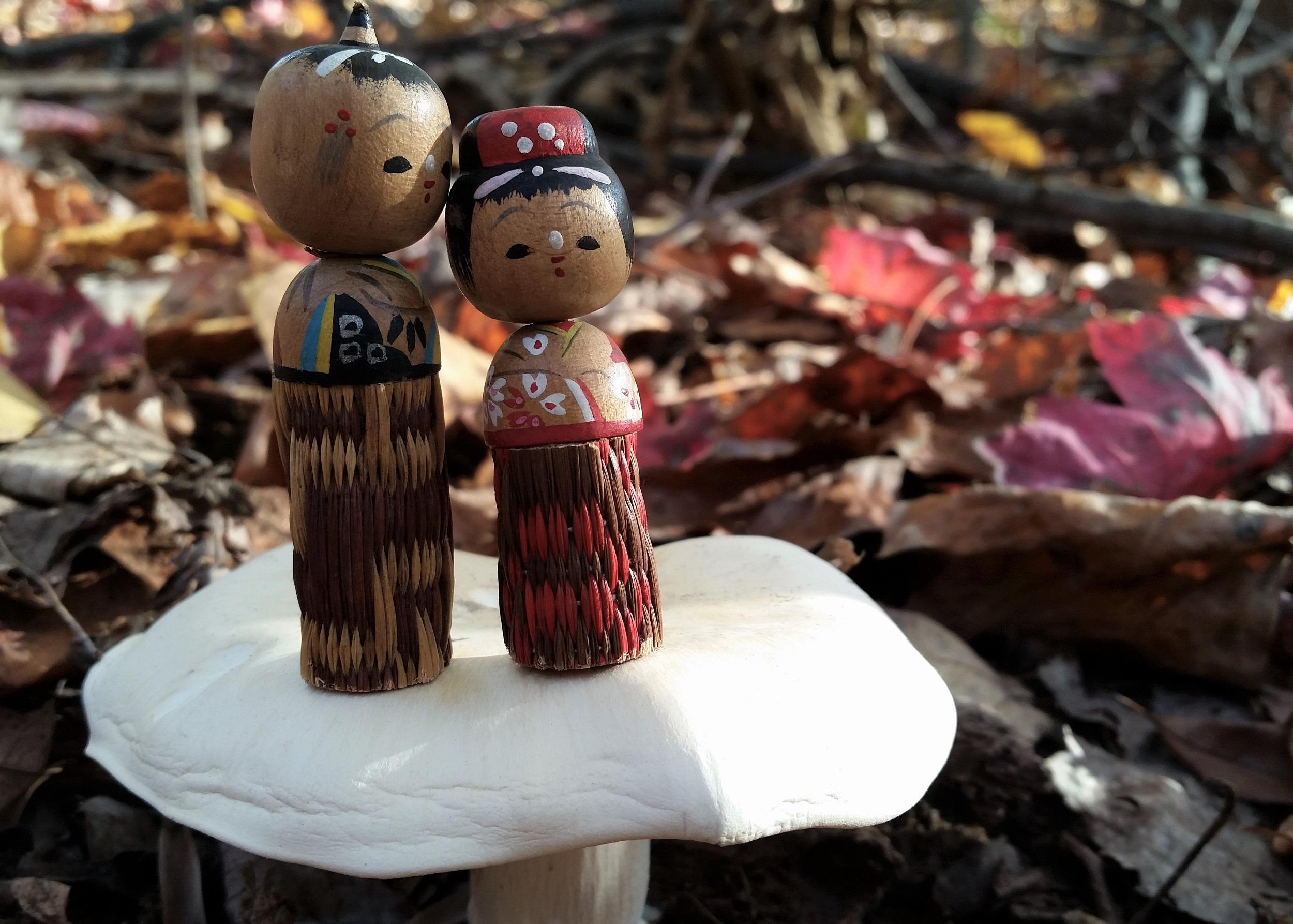 Copy of On a mushroom