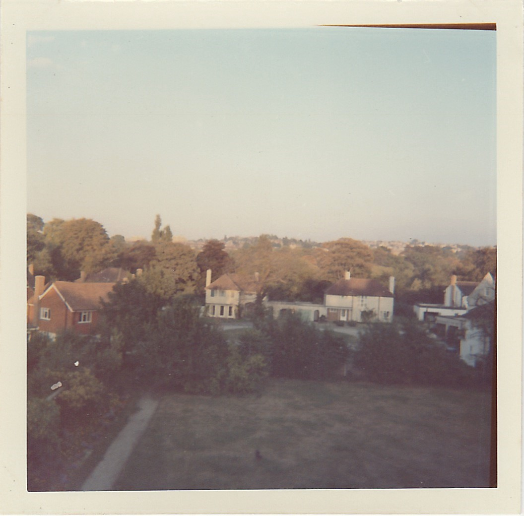 View from a rear window showing the garden and Frank Dixon Close. Source: Cheryl Spray