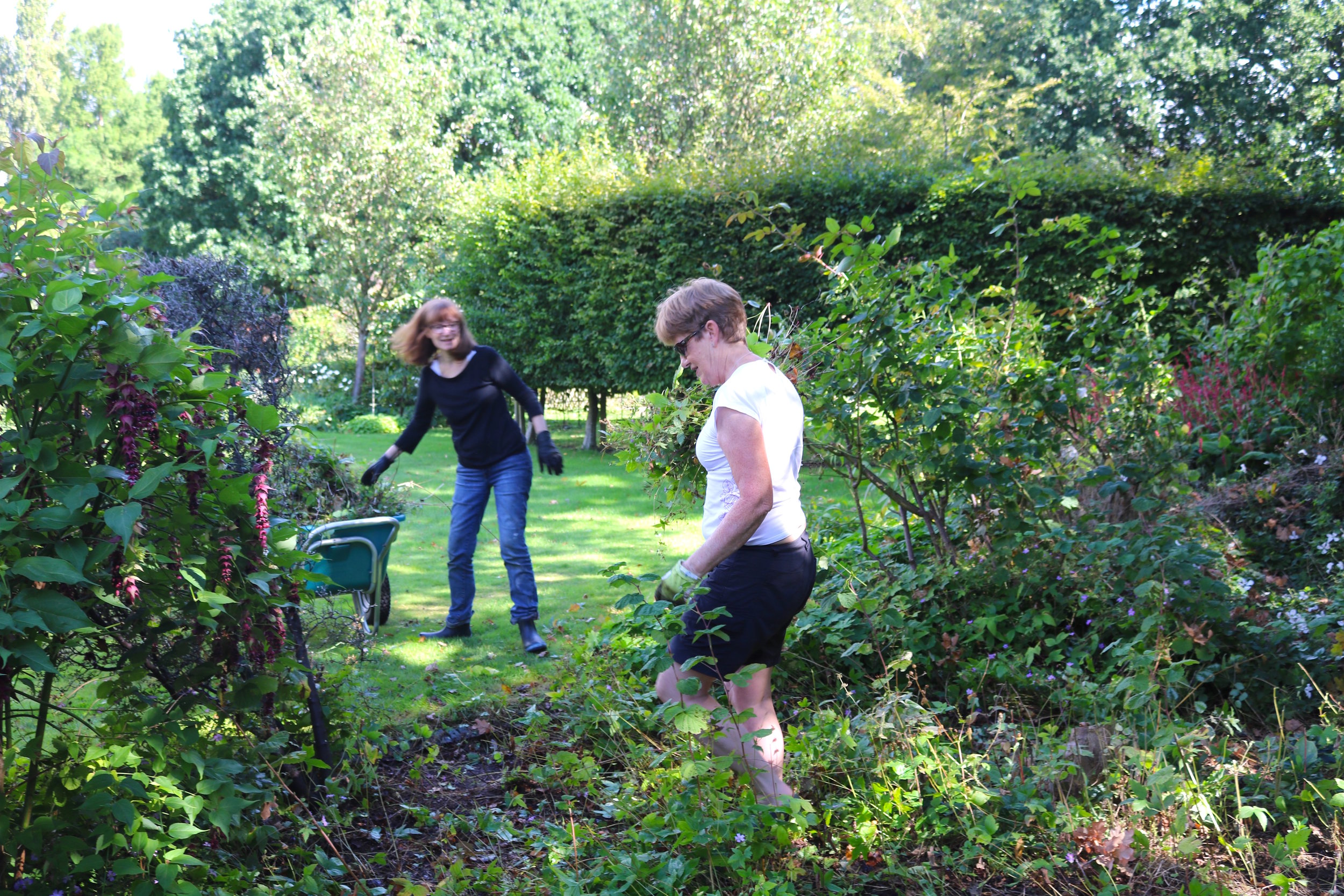 Garden volunteers helping to clear weeds at Bell House.