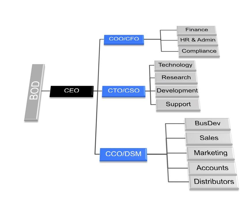 C-Level-Structure-Sample.jpeg