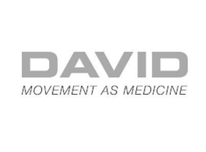 Grey DAVID Logo.jpg