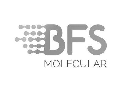 Grey BFS2 logo.jpg