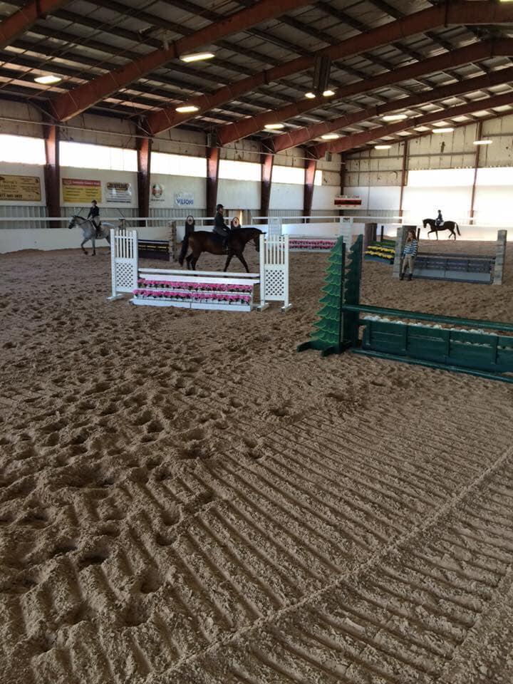 Horses inside macmillan new.jpg