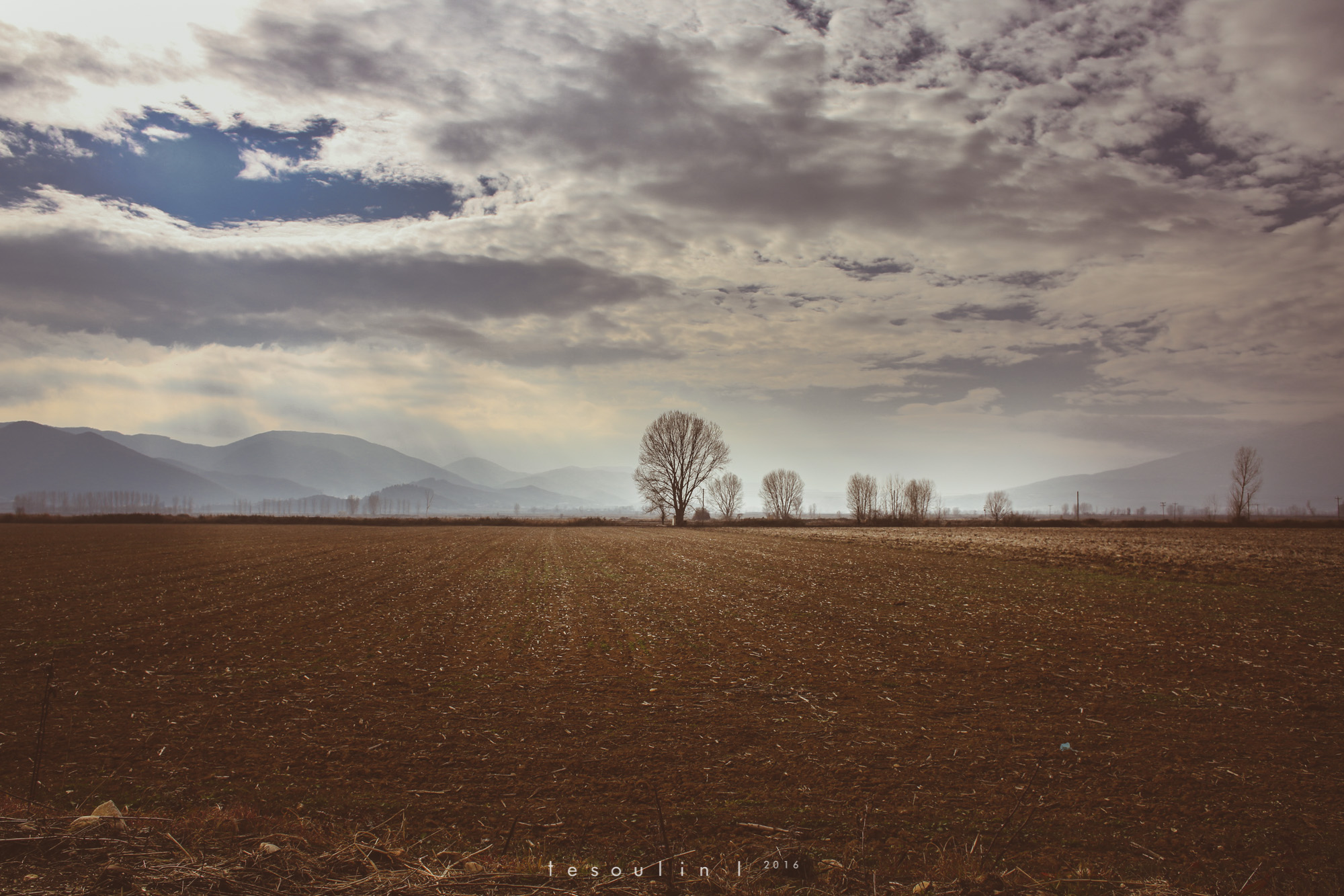 tesoulin_worked-nature-1