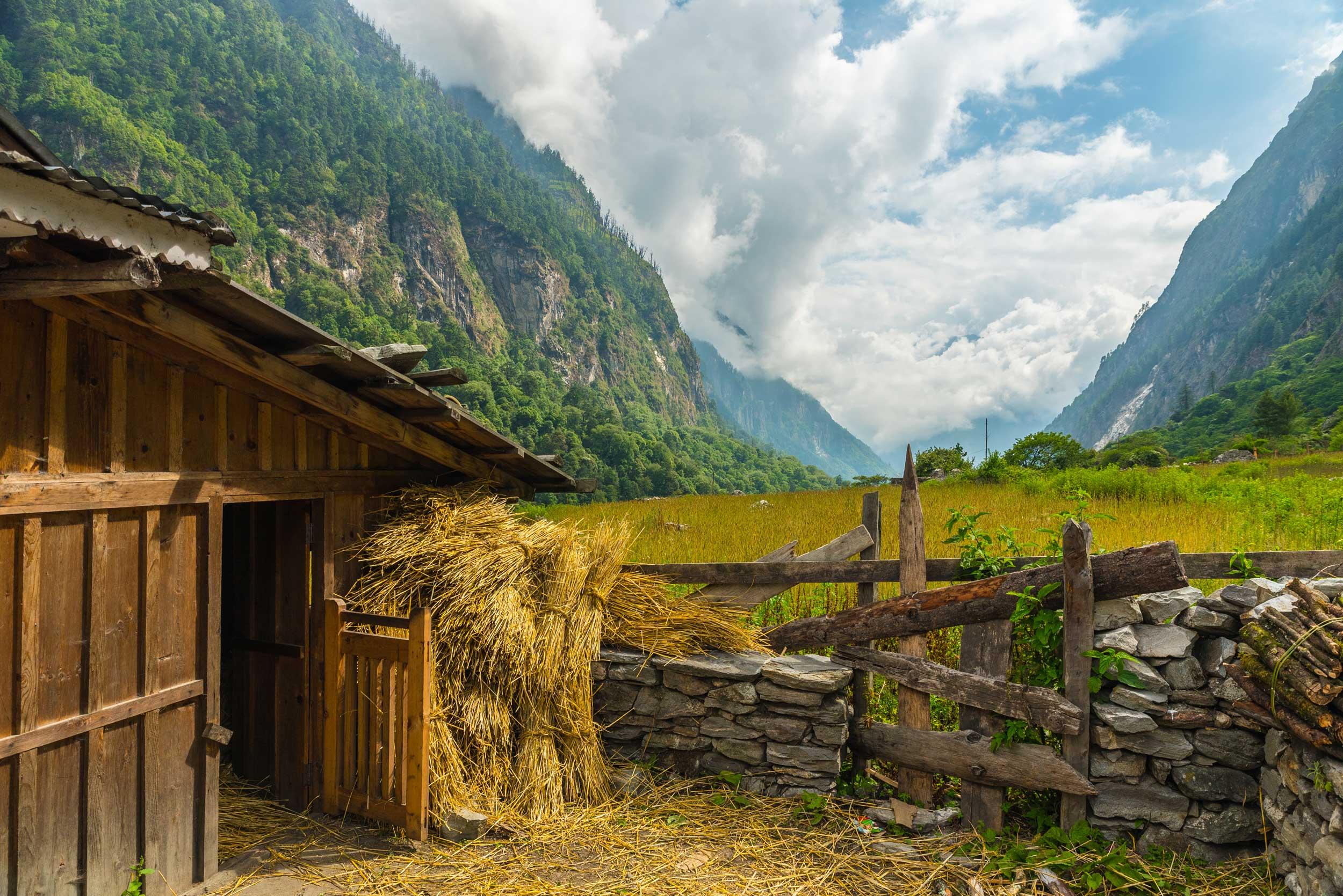 Dukh Kola Farm