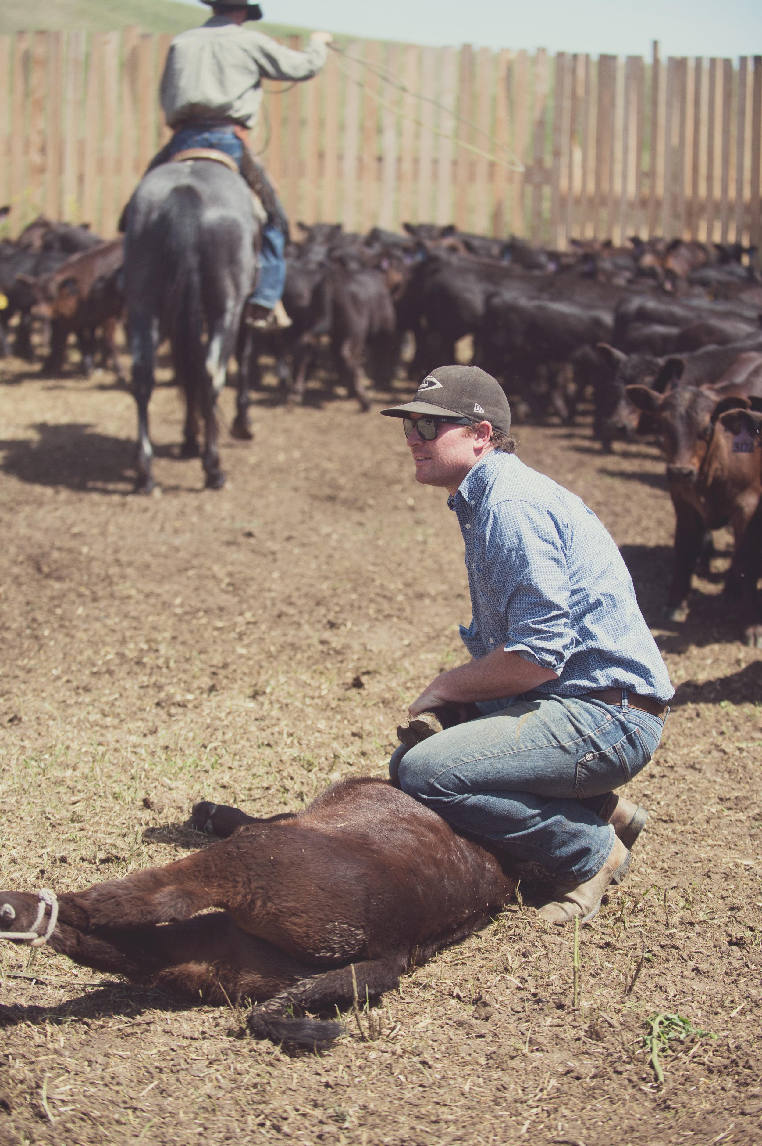 Bryan Donnelly- Ranch Hand