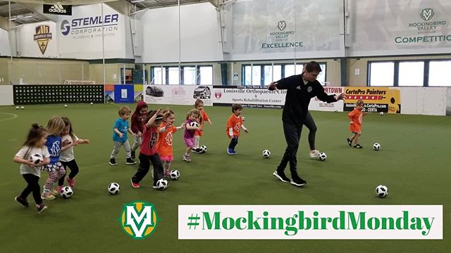 Creeping on the midway point of our spring youth sessions just like Coach Phil and our youngest players when they practice dribbling! #MockingbirdMonday