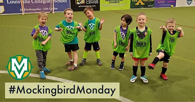 Some game faces are silly, some are scary, and some are just a smile! #MockingbirdMonday