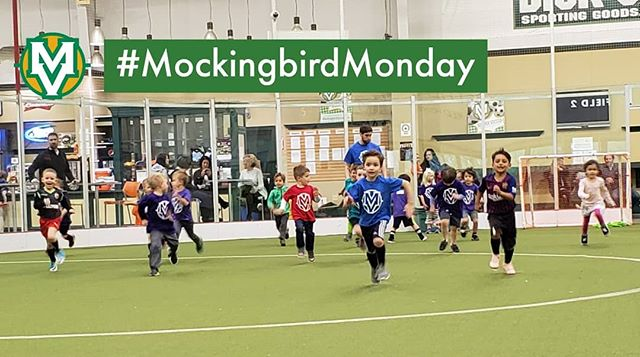 And they're off!  Kentucky Derby week is finally here meaning there will be no training on Friday (5/3) or games on Saturday (5/4) this week.  #MockingbirdMonday