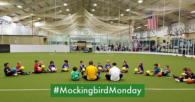 Something we can all agree on: starting out the week after Derby with a nice long stretching session #MockingbirdMonday