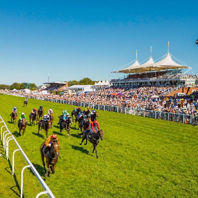 Another Glorious Day for day 4 of The Qatar Goodwood Festival! We are thrilled to be the official Water Partner for Goodwood and look forward to keeping all the racegoers hydrated today! ☀️ 🐎 💧#southdownswater #gloriousgoodwood #officialpartner #goodwood #horseracing #stayhydrated