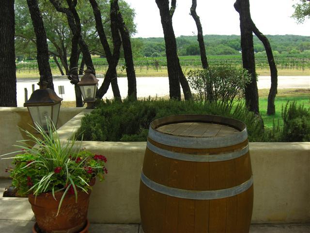 winery_view_vineyard.jpg