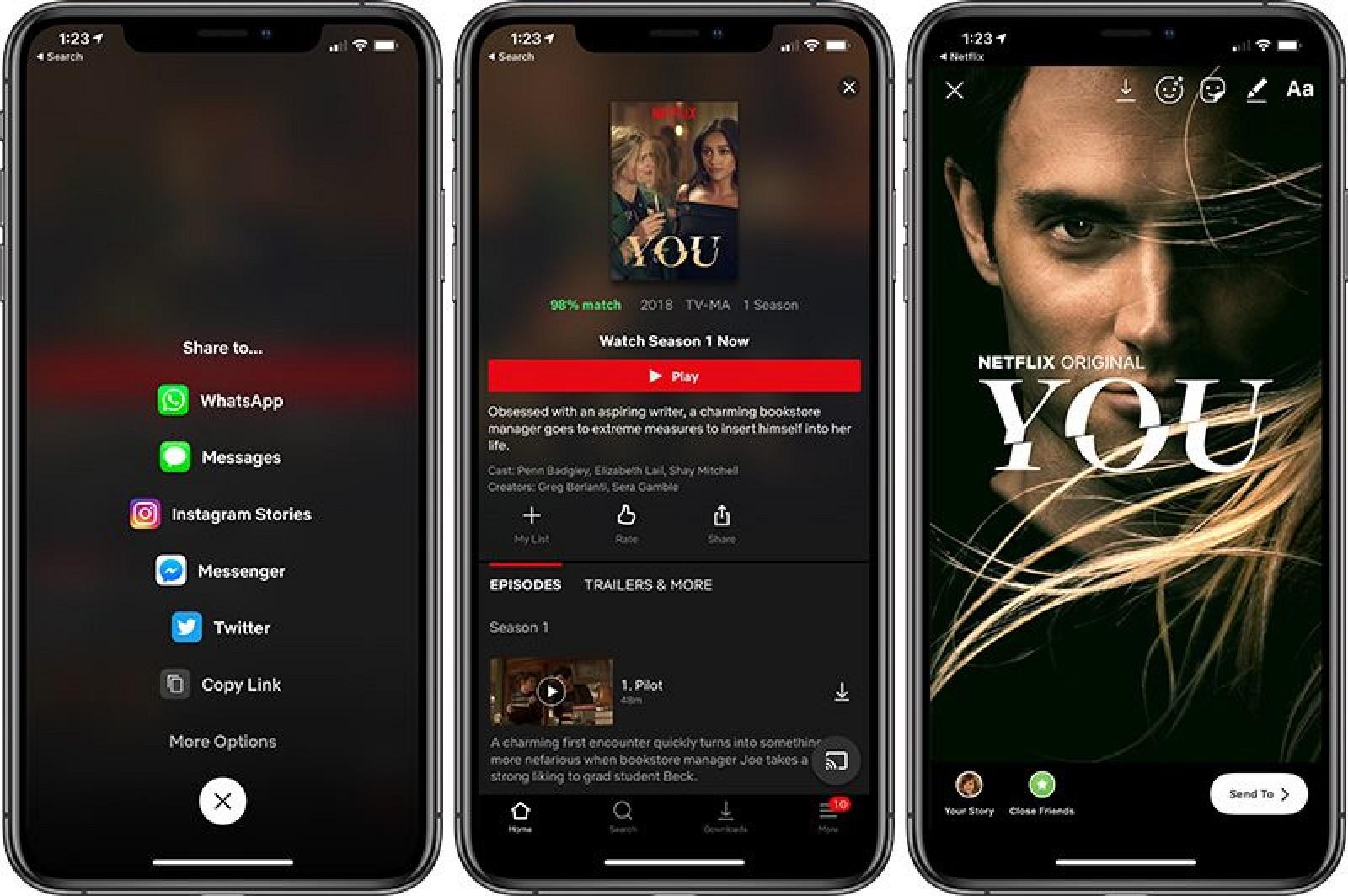 Netflix Instagram Stories integration