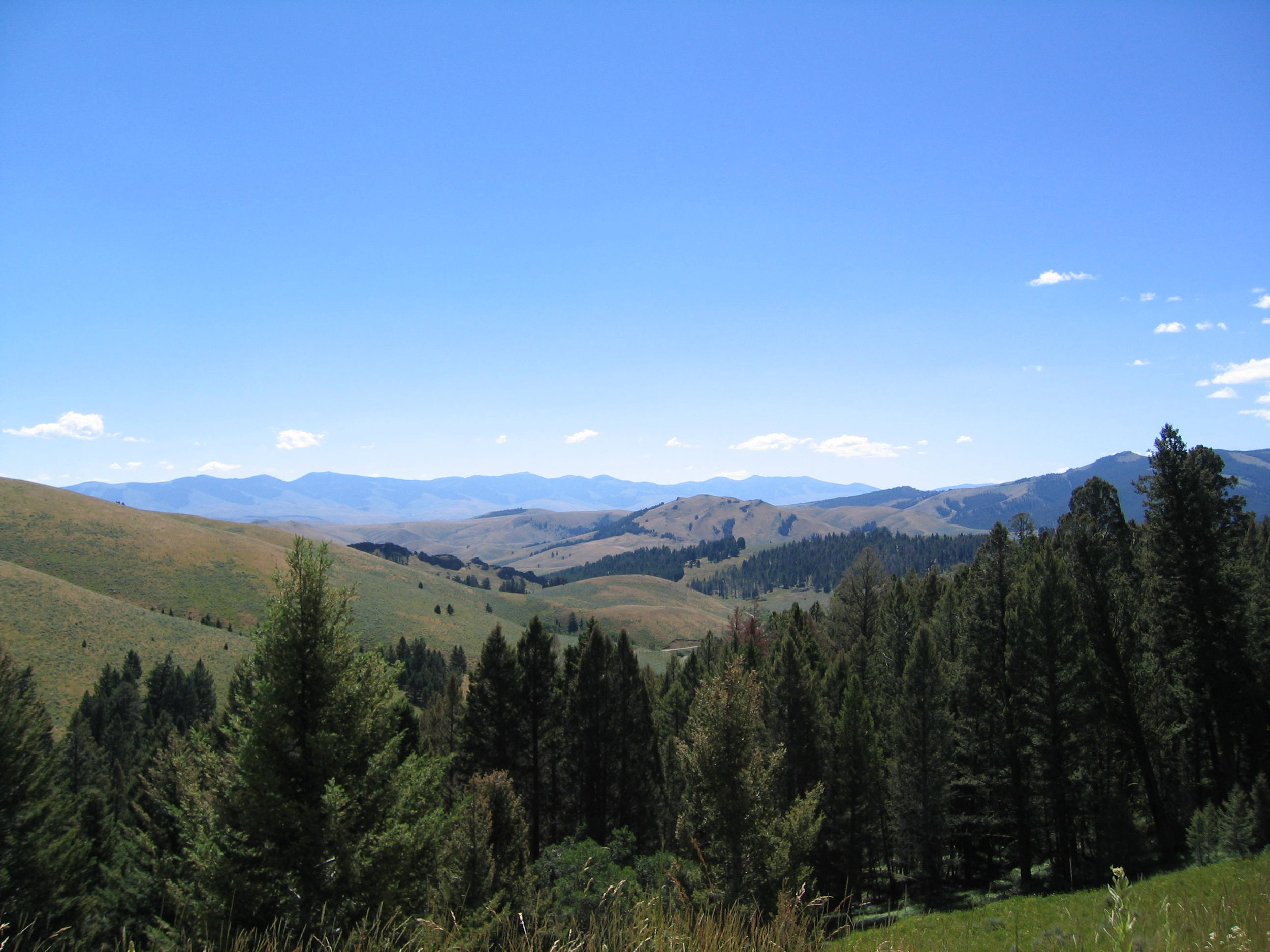 top of lemhi pass.JPG