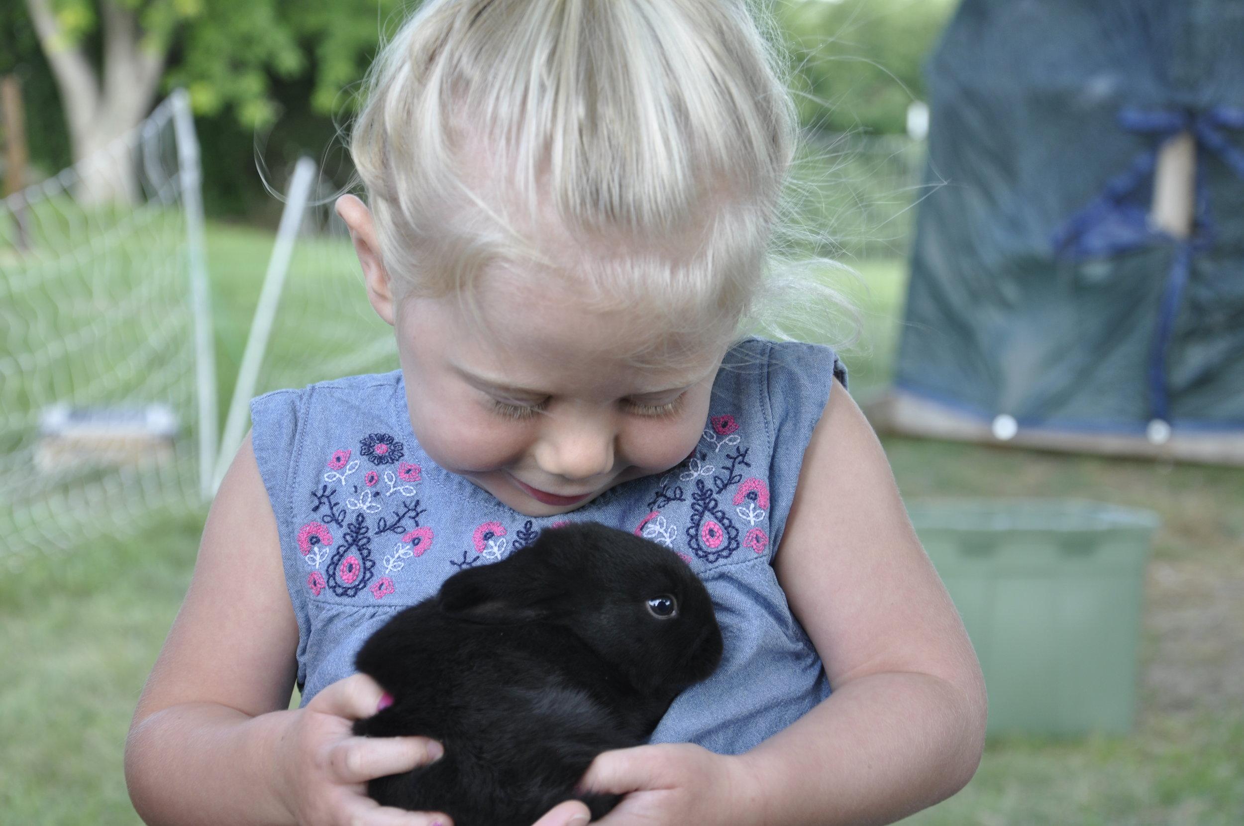 3 bunny.JPG