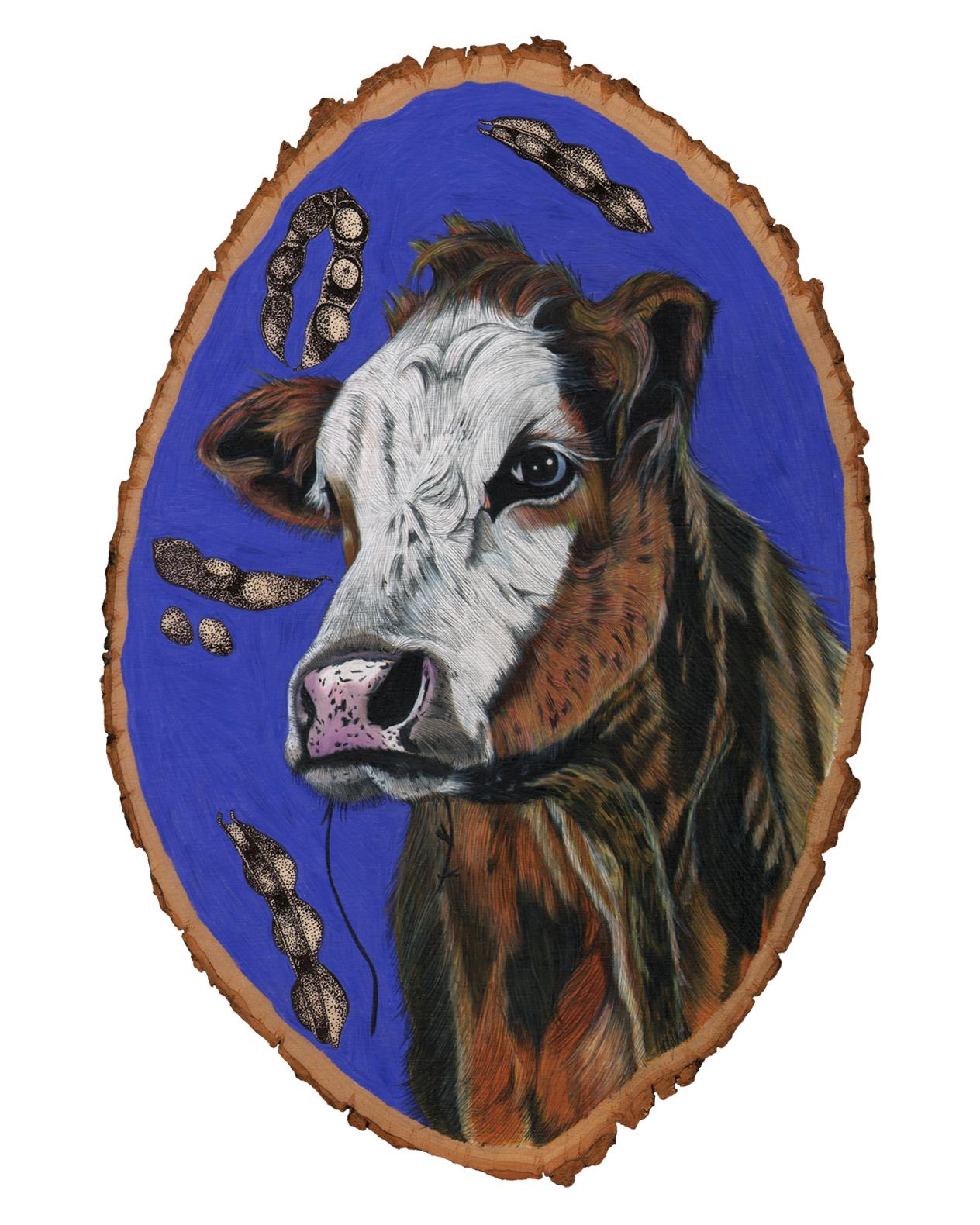cow8x10.jpg