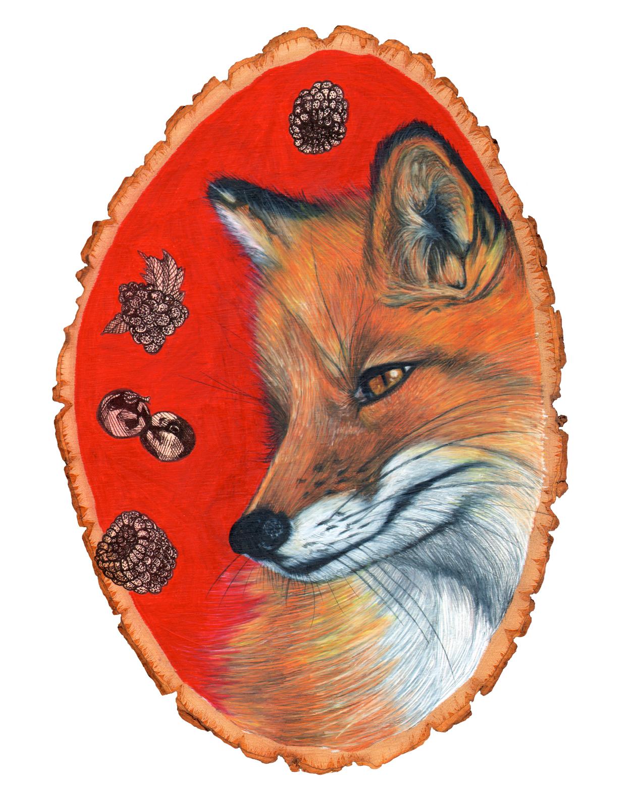 fox8x10.jpg