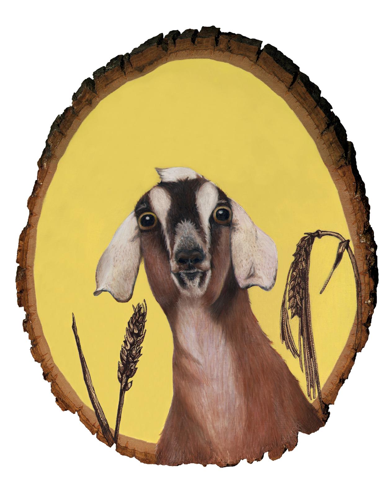 goat8x10.jpg