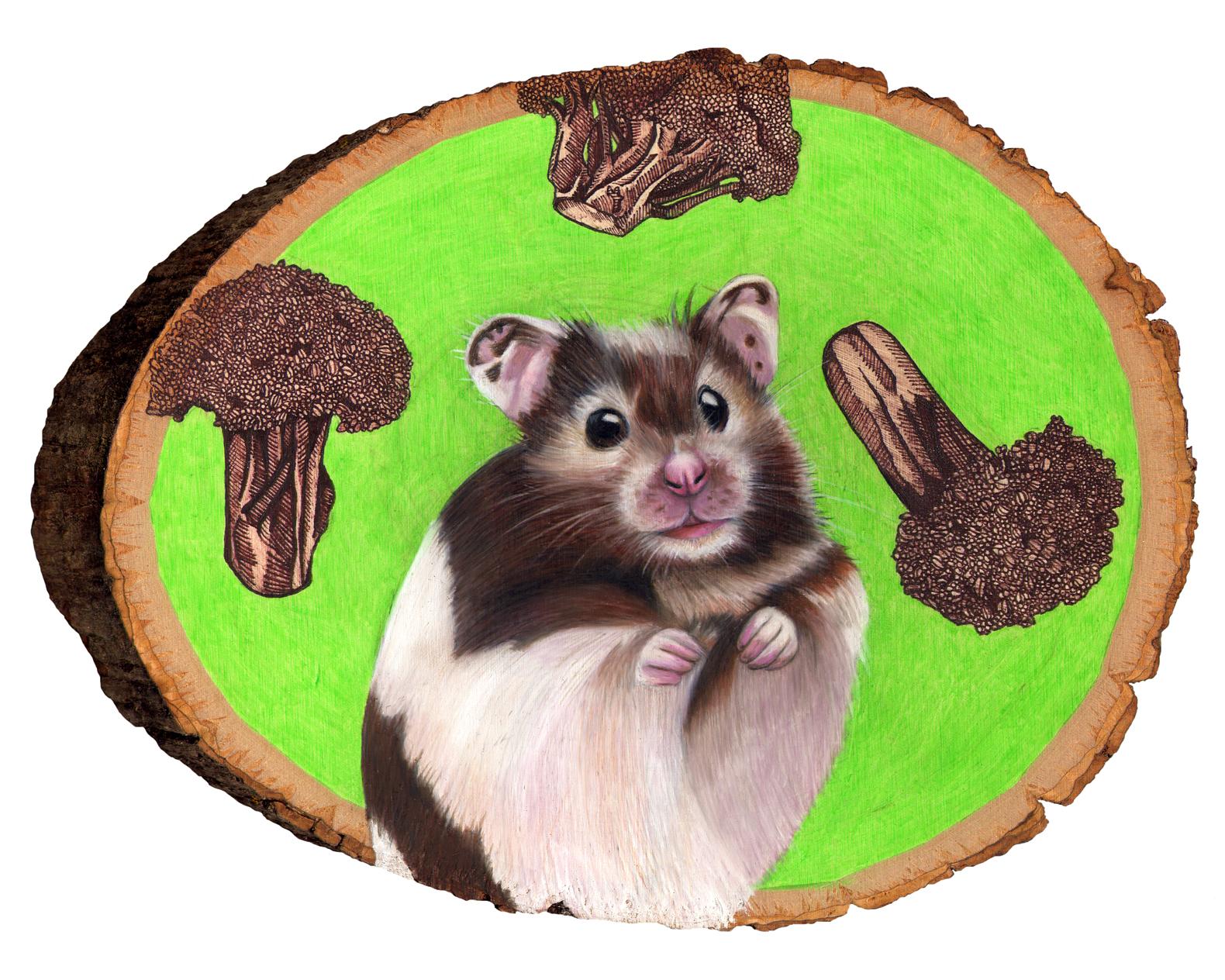 hamster 8x10.jpg