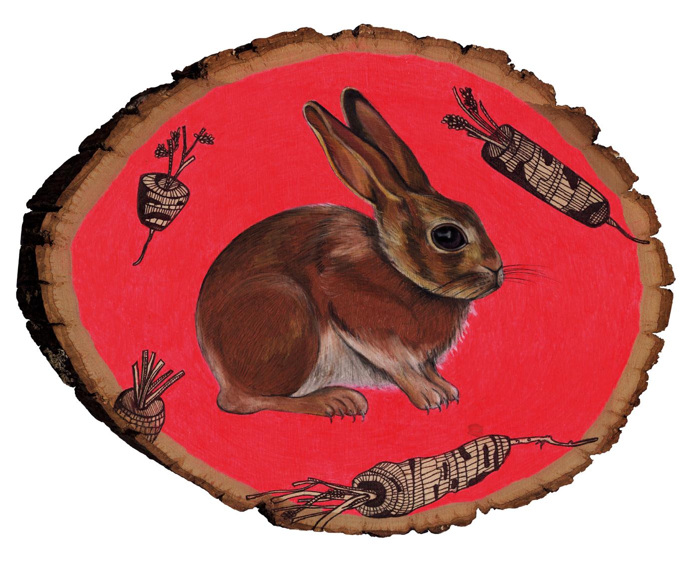 rabbit kodak 8x10.jpg