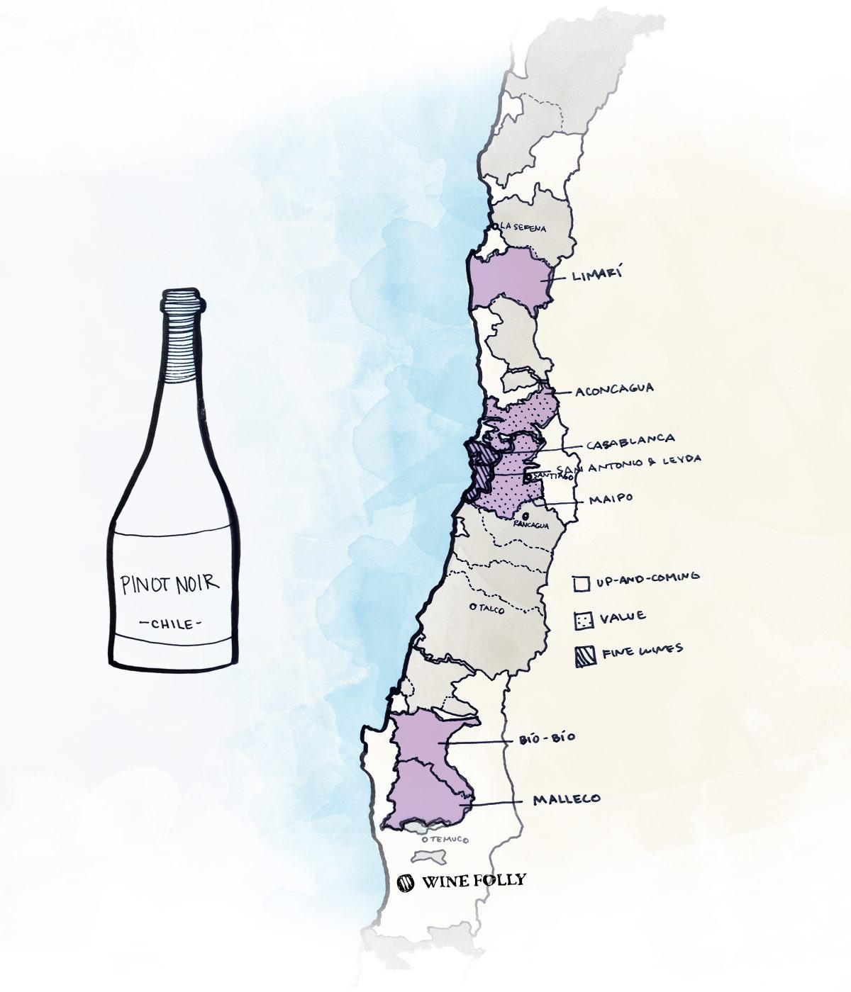 chilean-pinot-noir-best-wine-map.jpg