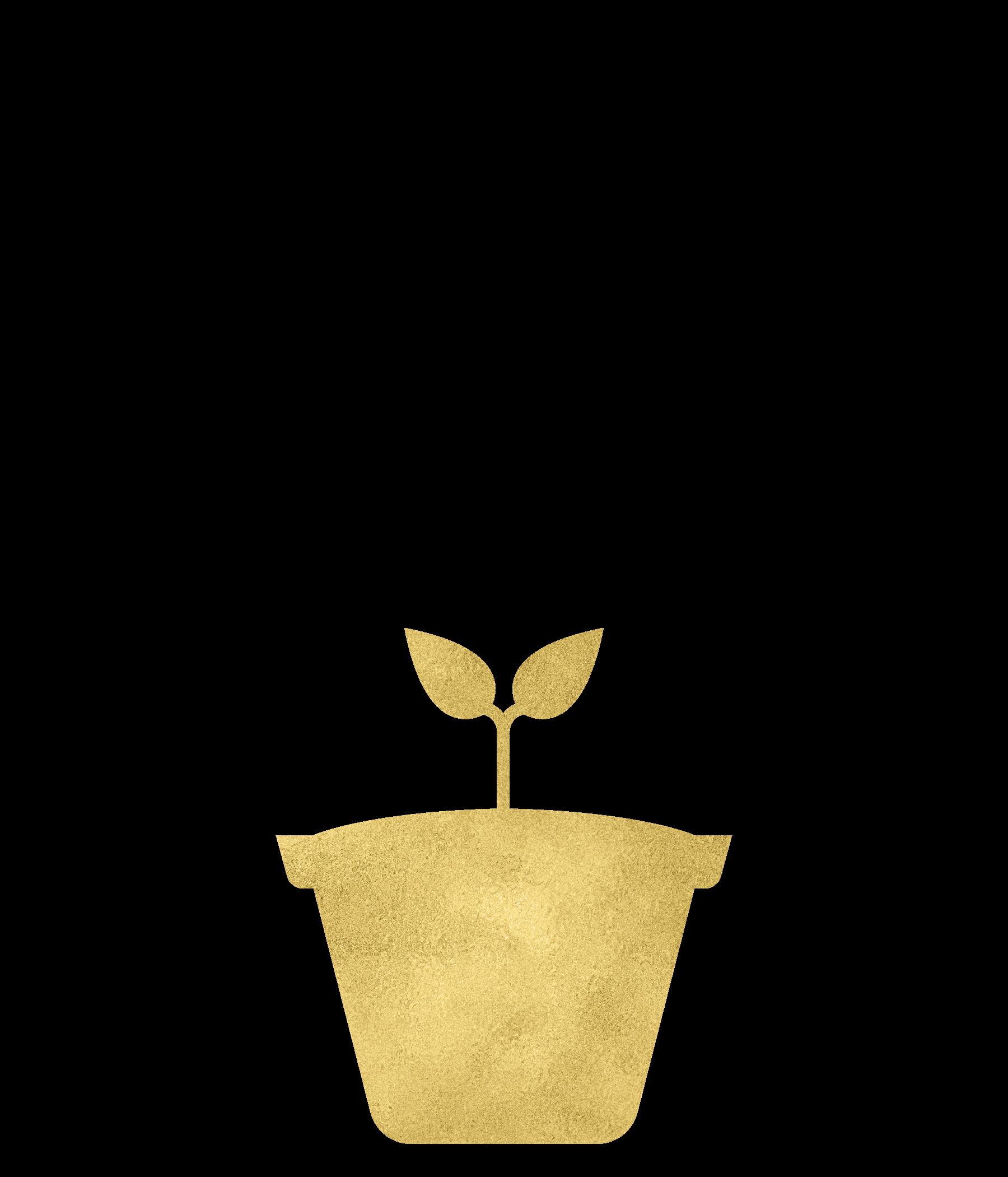 Gold Foil Plant-06.png