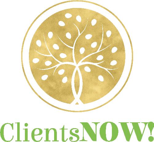 LSR - Clients NOW!_Logo COLOR.png