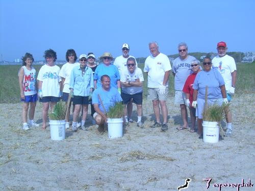 On Memorial Day weekend, when people were starting barbeques, the residents of this condominium came down to the beach with 24 thousand stems of beach grass.