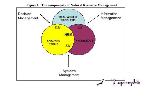 3.0 Decision support tools in NRM - strengths and weaknesses