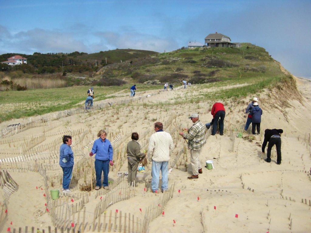 Ballston Beach Community Planting 5.14.11 033 copy 2