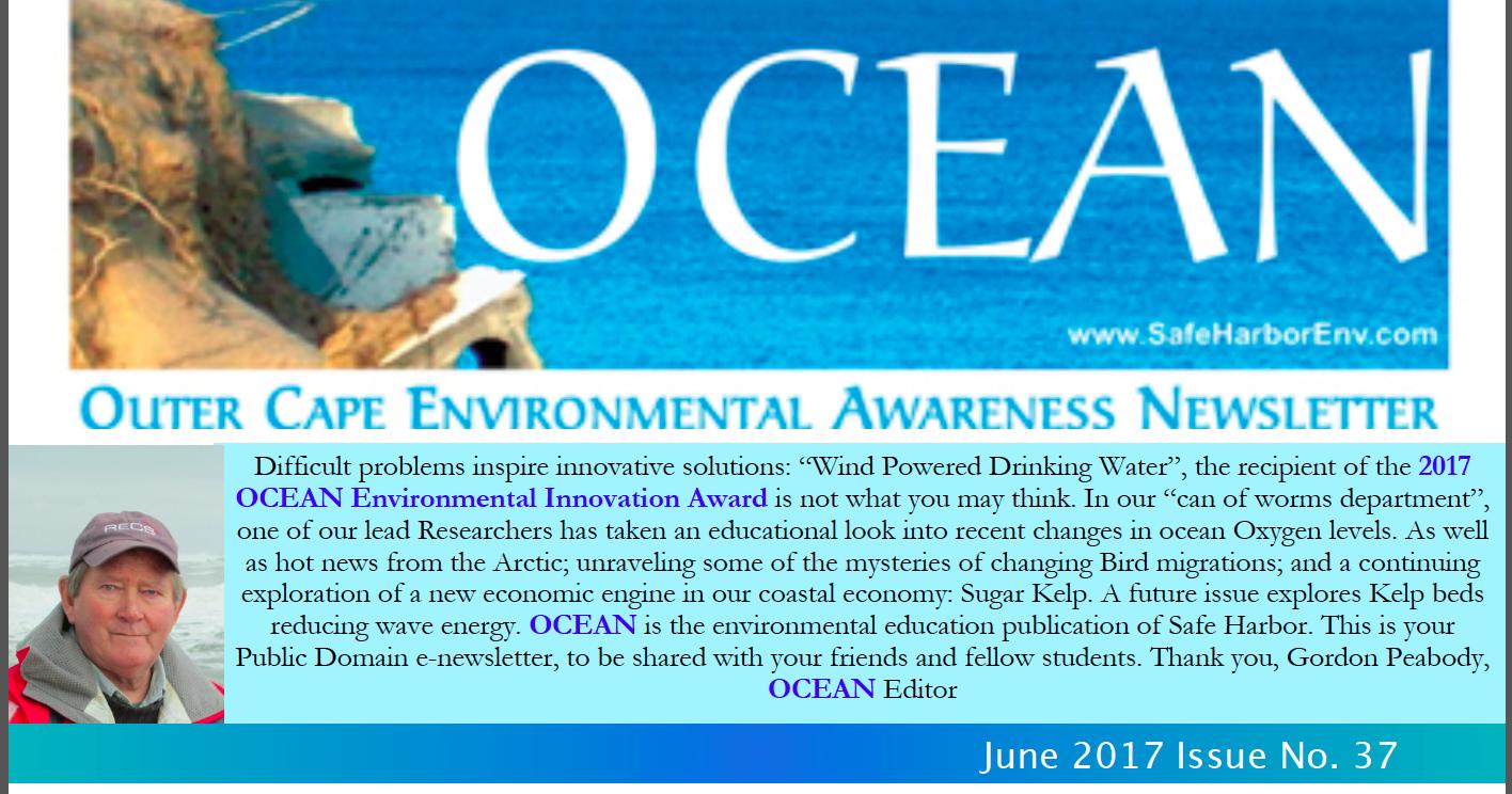 ocean37web.png
