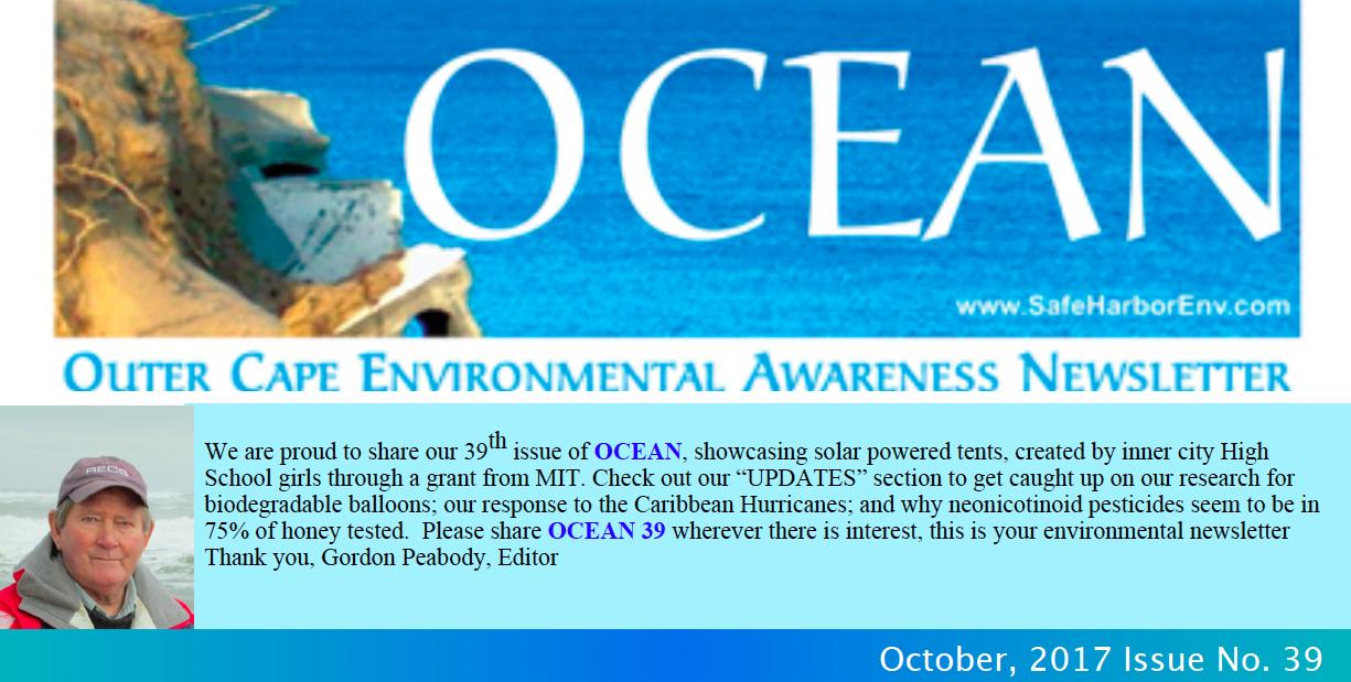 OCEAN39pic.png