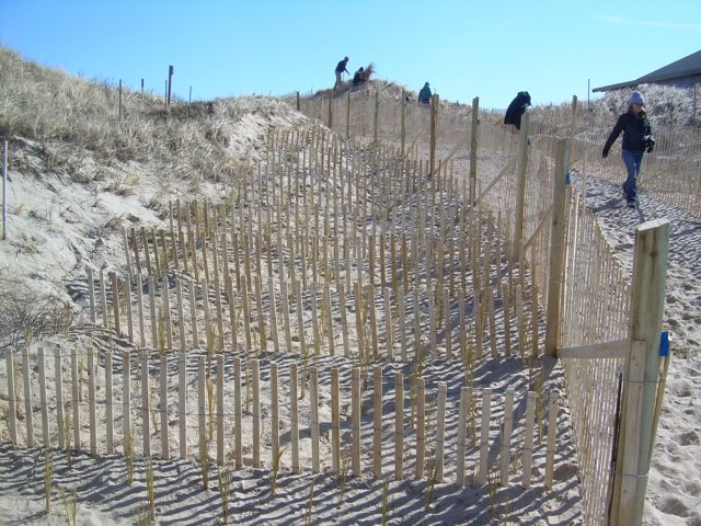 Town DPW Staff Created an angled pathway to reduce wind erosion.