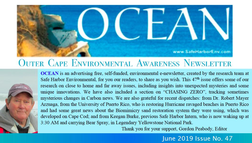 OCEAN47pic.png