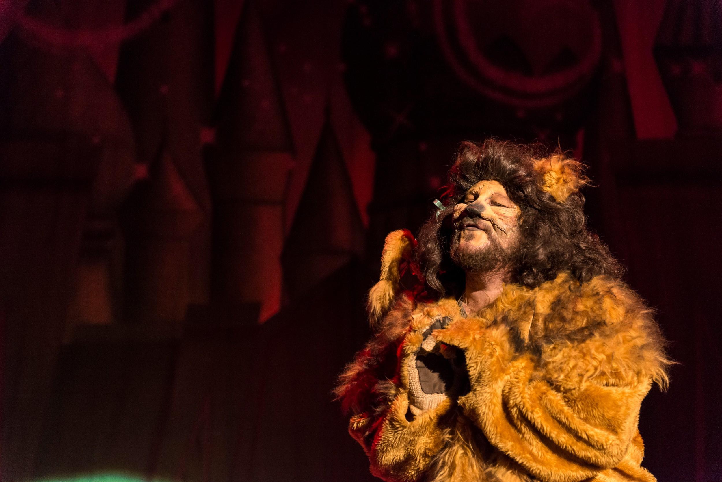 BATS - Wizard of Oz Nov 2014_25.jpg