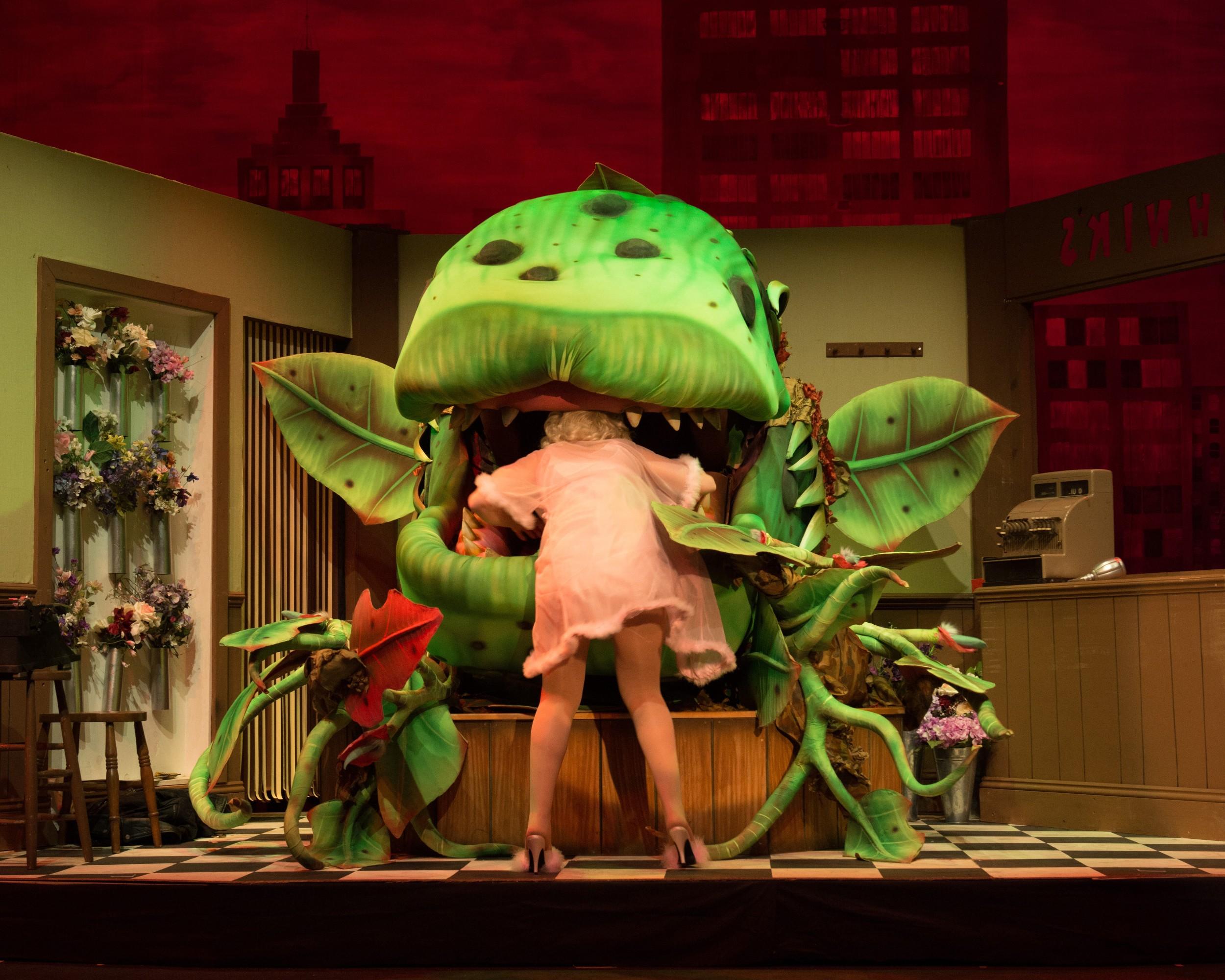BATS - Little Shop of Horrors May 2013_22.jpg