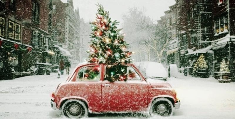 Winter - Christmas Tree Car.jpg
