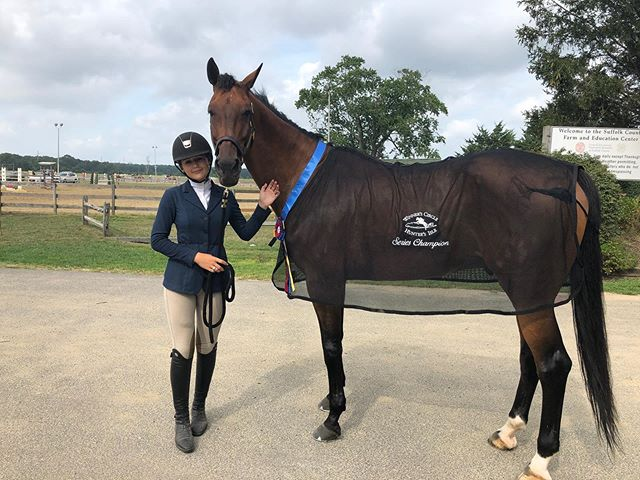 Congratulations to Natasha Schneur and Naloubet for finishing the summer Yaphank shows series champion in the low hunters!
