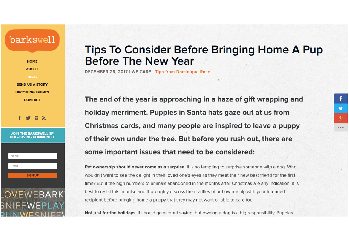 Pet Care Article - An article for prospective dog owners buying a puppy for Christmas. Headline and article were altered by the client to reuse for New Year's Eve.