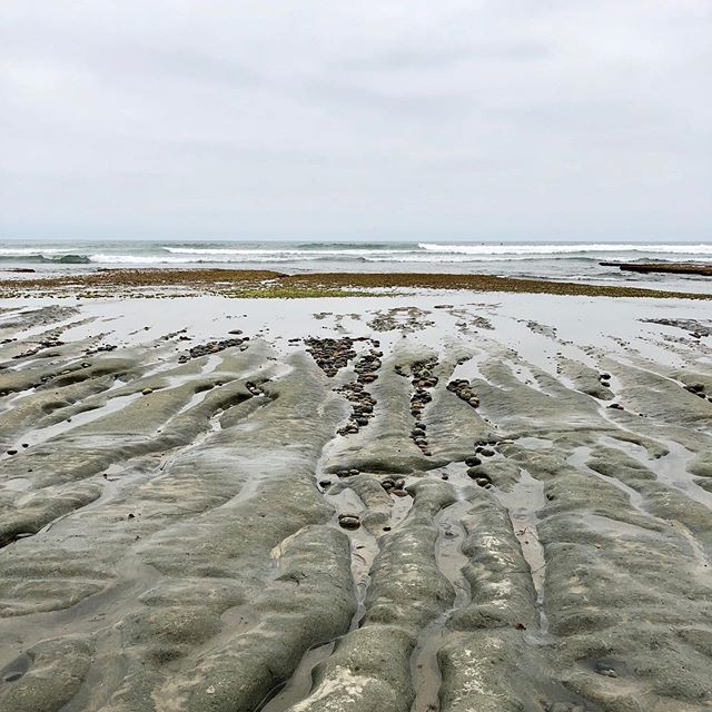 May gray beach walk... . . . . . . #spring #socal #encinitas #swamis