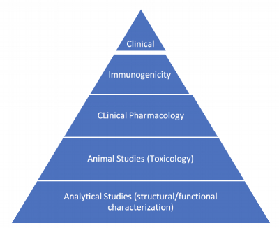 A pyramid approach to describe relative importance of studies. FDA