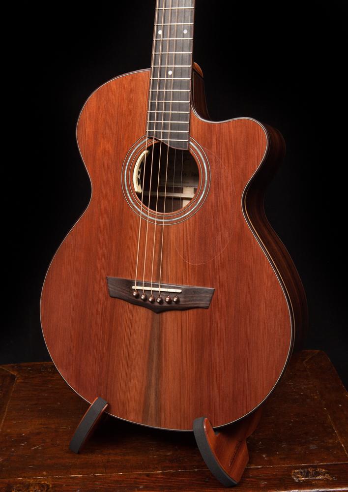 Lichty-Guitar.jpg