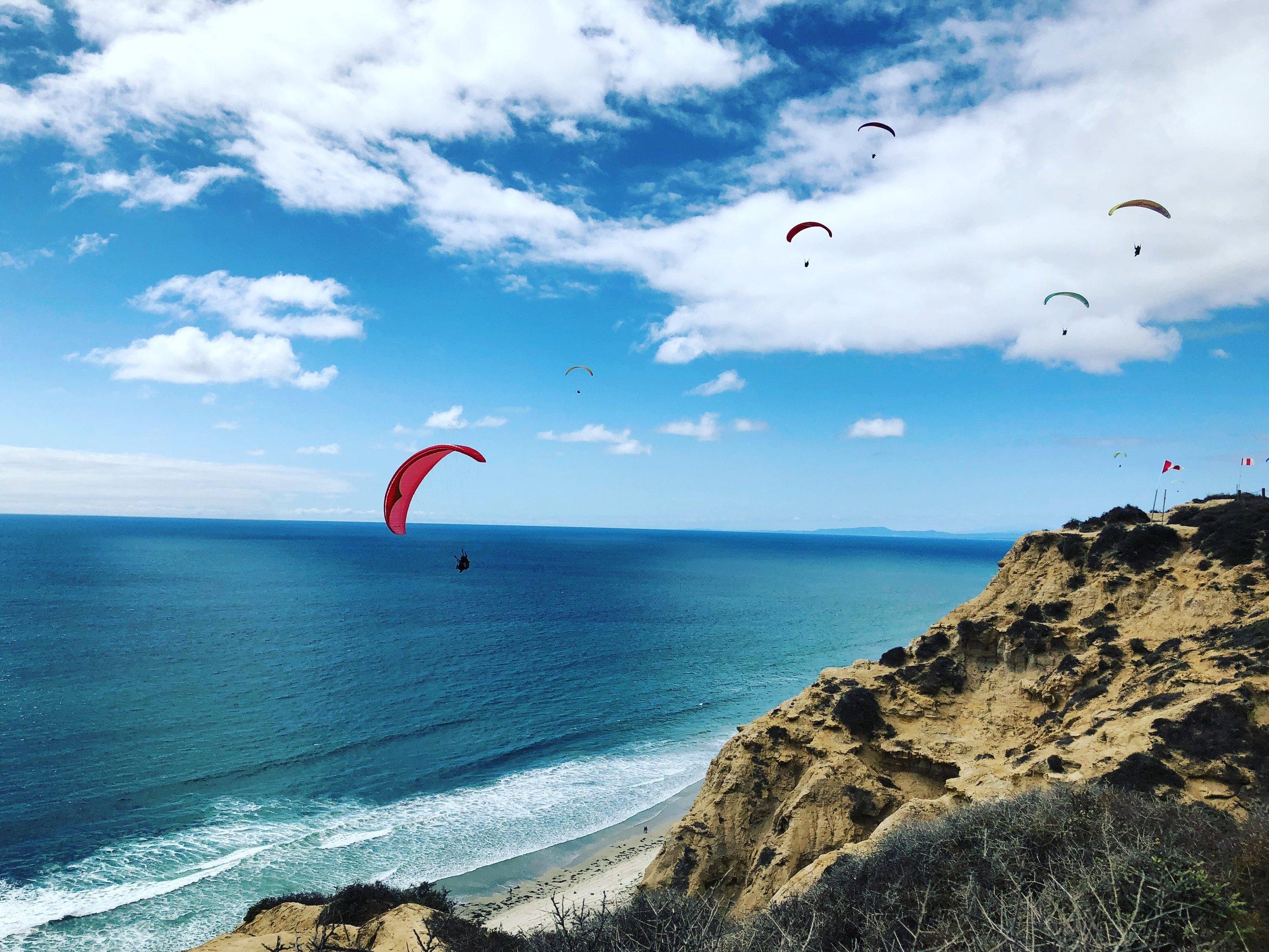 FREEDOM - paragliding.jpg