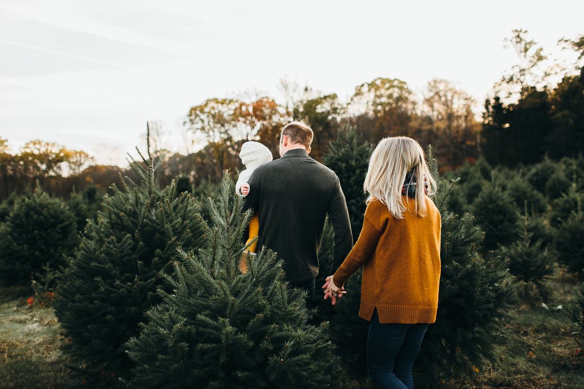 editorial-connecticut-family-photography (29 of 44).jpg