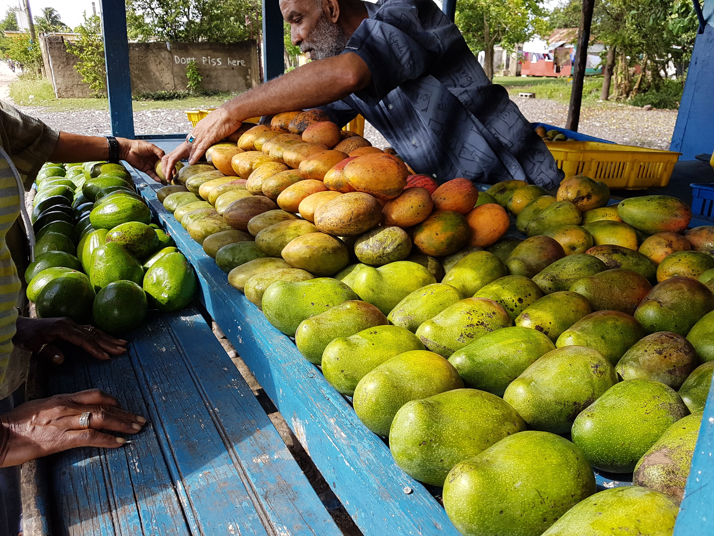 I love the fresh fruits and vegetables that are everywhere in Jamaica!