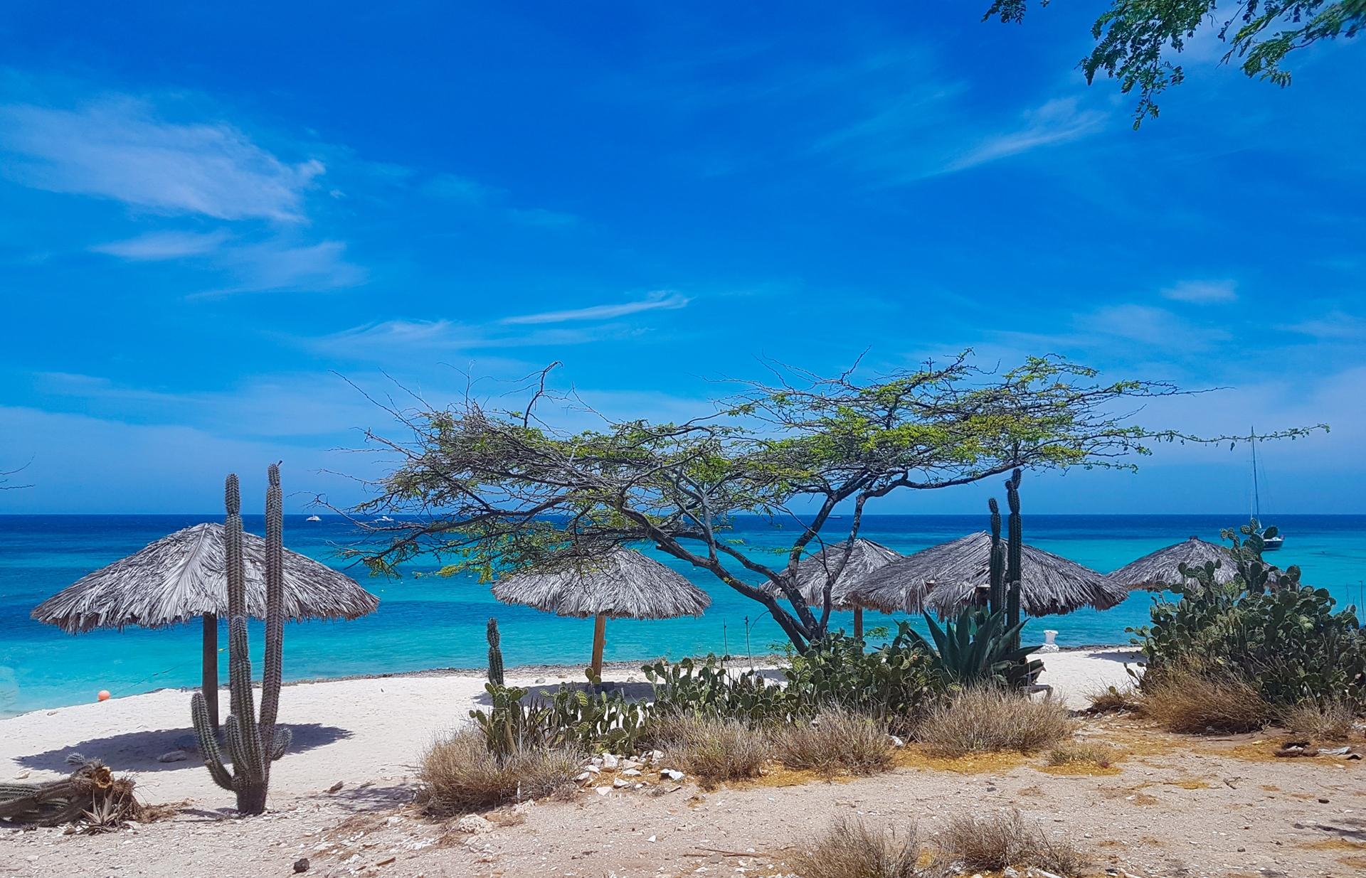 Boca Catalina Beach