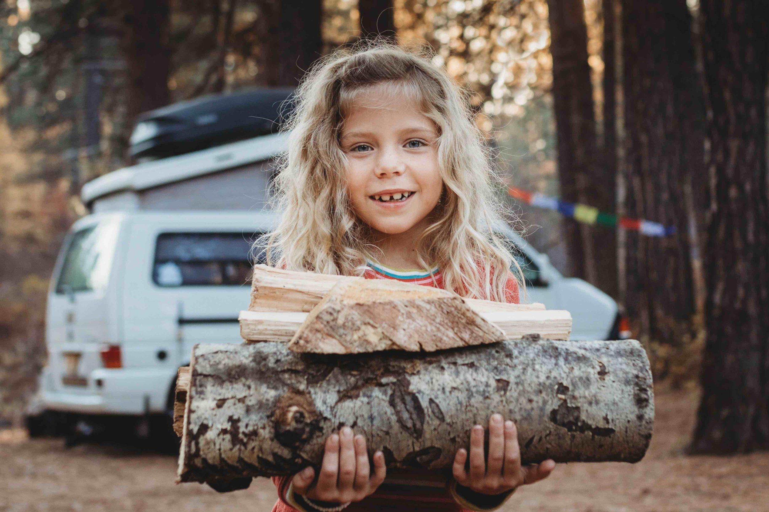 Fireside Eurovan Camping