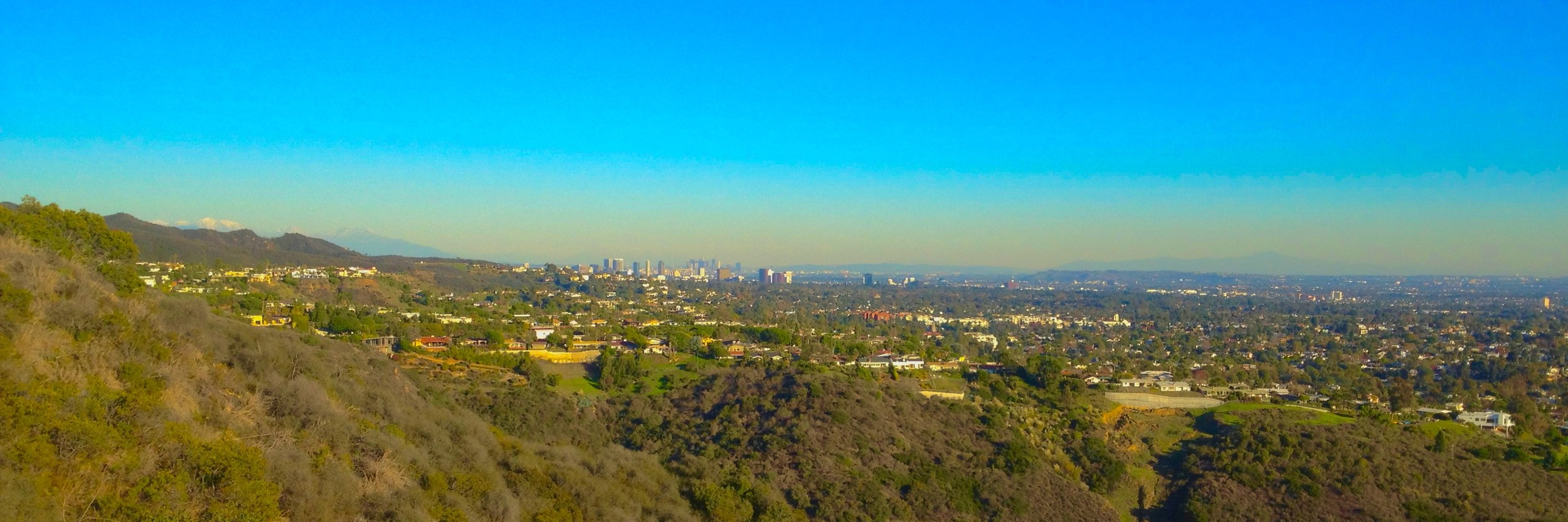 A view of downtown Los Angeles from the Santa Monica Mountains. Note the iconic inversion layer of smog. High levels of atmospheric pollution have contributed to elevated nitrogen deposition, negatively impacting native ecosystems.