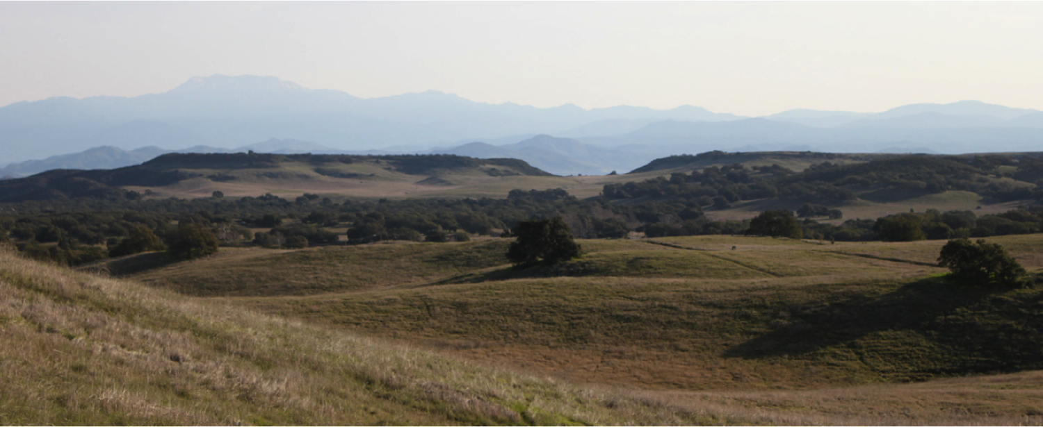 The Santa Rosa Plateau, located in southern California, is home to some of the best preserved native perennial grasslands in the state. However, the beautiful grasslands shown here are still heavily impacted by invasive annual grasses.