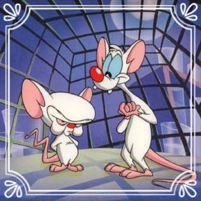 Pick #66: Pinky & The Brain - Animaniacs - Cartoon Character (Zack)
